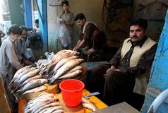 Pakistan fish seller Royalty Free Stock Photography
