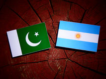 Pakistan flag with Argentinian flag on a tree stump. Pakistan flag with Argentinian flag on a tree stump Stock Photo