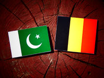 Pakistan flag with Belgian flag on a tree stump isolated Royalty Free Stock Photo