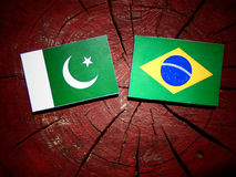 Pakistan flag with Brazilian flag on a tree stump isolated. Pakistan flag with Brazilian flag on a tree stump Stock Photography