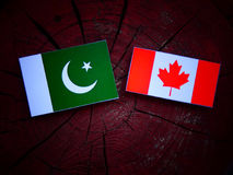 Pakistan flag with Canadian flag on a tree stump isolated Royalty Free Stock Photos