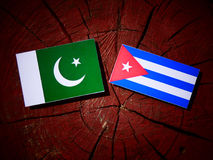 Pakistan flag with Cuban flag on a tree stump isolated. Pakistan flag with Cuban flag on a tree stump Royalty Free Stock Image
