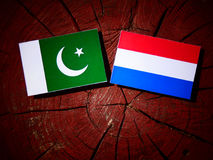 Pakistan flag with Dutch flag on a tree stump isolated. Pakistan flag with Dutch flag on a tree stump Stock Image