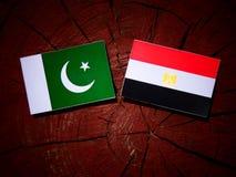 Pakistan flag with Egyptian flag on a tree stump  Royalty Free Stock Photos