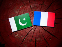 Pakistan flag with French flag on a tree stump isolated. Pakistan flag with French flag on a tree stump Stock Images