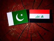 Pakistan flag with Iraqi flag on a tree stump isolated Stock Image