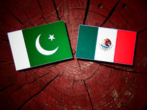Pakistan flag with Mexican flag on a tree stump isolated Royalty Free Stock Photo