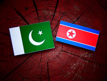 Pakistan flag with North Korean flag on a tree stump  Royalty Free Stock Photos