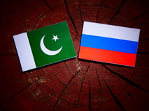 Pakistan flag with Russian flag on a tree stump. Pakistan flag with Russian flag on a tree stump Royalty Free Stock Image
