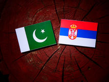 Pakistan flag with Serbian flag on a tree stump isolated Stock Photos