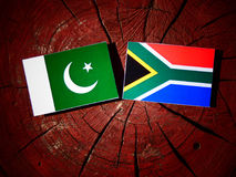 Pakistan flag with South African flag on a tree stump isolated. Pakistan flag with South African flag on a tree stump Stock Image