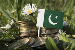 Pakistan flag with stack of money coins with grass. And flowers Royalty Free Stock Photo