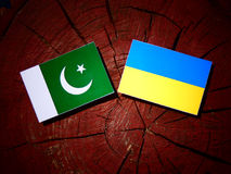 Pakistan flag with Ukrainian flag on a tree stump isolated. Pakistan flag with Ukrainian flag on a tree stump Royalty Free Stock Image