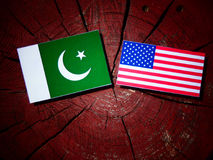 Pakistan flag with USA flag on a tree stump. Pakistan flag with USA flag on a tree stump Royalty Free Stock Images