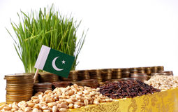Pakistan flag waving with stack of money coins and piles of wheat. And rice seeds Royalty Free Stock Images