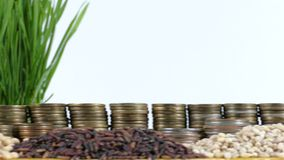 Pakistan flag waving with stack of money coins and piles of wheat. And rice seeds stock footage