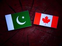 Pakistan flaga z kanadyjczyk flaga na drzewnym fiszorku odizolowywającym zdjęcia royalty free