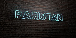 PAKISTAN -Realistic Neon Sign on Brick Wall background - 3D rendered royalty free stock image. Can be used for online banner ads and direct mailers stock illustration