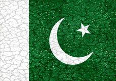Pakistan Style National Flag Royalty Free Stock Photo