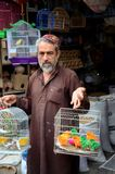 Pakistani man sells pet birds at Empress Market bazaar Karachi Pakistan. Karachi, Pakistan - February 22, 2015: A Pakistani animal trader wearing a traditional Royalty Free Stock Photo