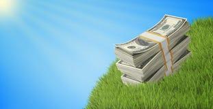 Pakjes van dollars die op een gras onder blauwe hemel liggen Stock Foto