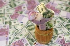 Pakken bankbiljetten in vat Stock Afbeeldingen