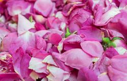 Pakken verse druivenbladeren voor verkoop bij stadsmarkt stock foto's