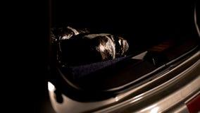 Pakketten met heroïne in autoboomstam worden verborgen, het smokkelen, bewijsmateriaal in druggeval dat royalty-vrije stock afbeelding