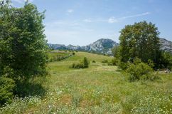 Paklenica Nationalpark Хорватия Стоковое Фото