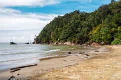 Paku海滩在Bako国家公园,婆罗洲,马来西亚 库存照片