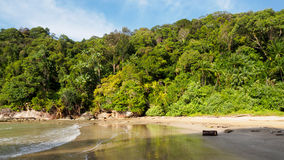 Paku海滩在Bako国家公园,婆罗洲,马来西亚 免版税库存图片