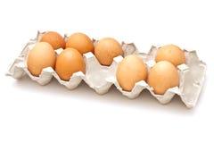 pakunek kartonu jajek pakunek Obraz Stock
