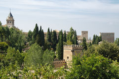 Palácio de Alhambra Fotografia de Stock Royalty Free
