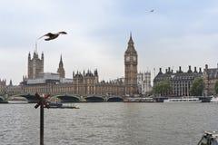Palácio de Ben grande e de Westminster, Londres Foto de Stock