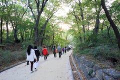 Palácio de Changdeokgung Foto de Stock Royalty Free