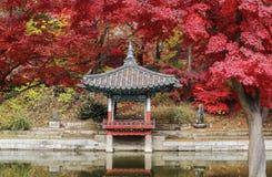 Palácio de Changdeokgung, Coreia do Sul imagens de stock royalty free