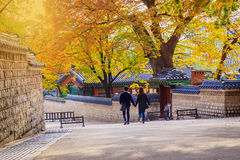 Palácio de Gyeongbokgung Imagens de Stock