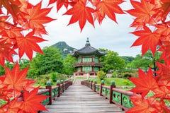 Palácio de Gyeongbokgung com as folhas de outono coloridas em Seoul Coreia imagem de stock royalty free
