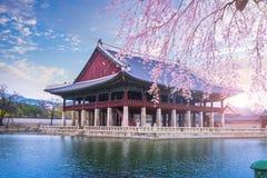 Palácio de Gyeongbokgung na mola, Coreia do Sul foto de stock