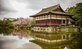 Palácio de madeira antigo com flor de cerejeira fotografia de stock royalty free