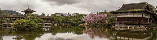 Palácio de madeira antigo com flor de cerejeira imagens de stock