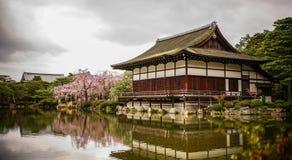 Palácio de madeira antigo com flor de cerejeira foto de stock
