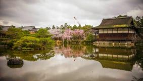 Palácio de madeira antigo com flor de cerejeira fotografia de stock