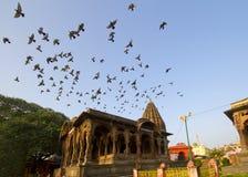 Palácio indiano antigo com voo dos pássaros Imagens de Stock
