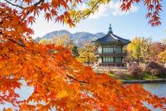 Palácio no outono, Seoul de Gyeongbokgung, Coreia do Sul fotos de stock