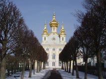 Palácio no Petergof Imagem de Stock