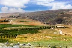 Palästina Stockbilder