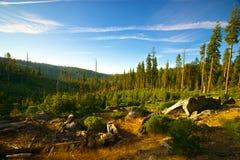 palący łąkowy park narodowy Yosemite Obrazy Stock