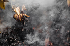 Palący dym & liście Zdjęcie Stock