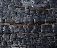 palący drewno Obrazy Stock
